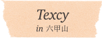 Texcy in 六光甲山